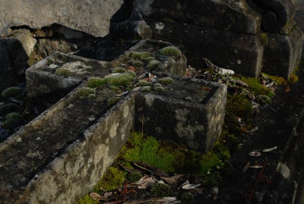 Suite pour une pierre –  Sequenza Litaldus